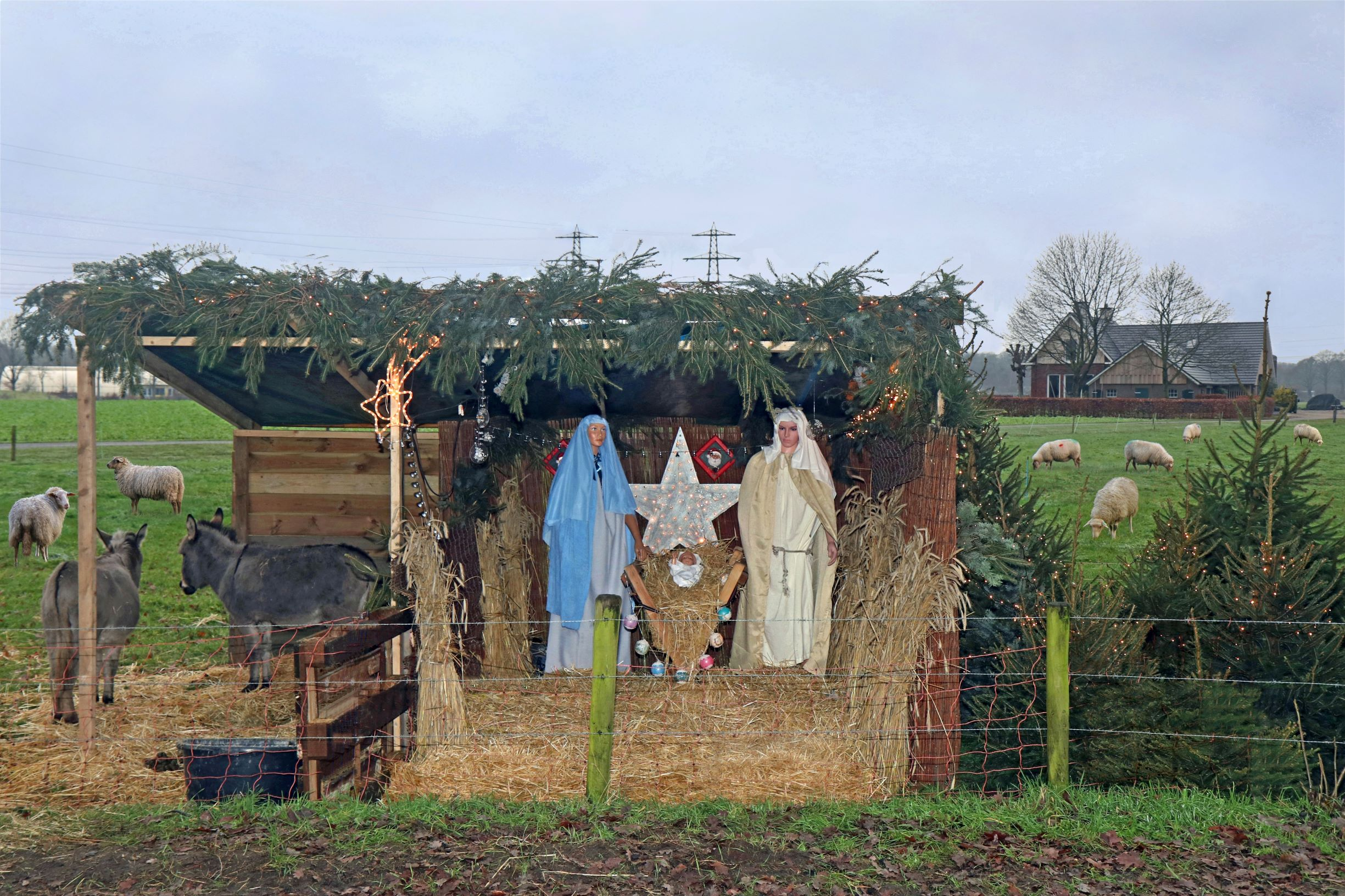 Kerststal in Diepenveen x